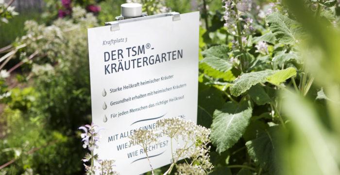 TSM®-Kräutergarten